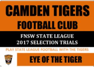edit-page-camden-tigers-wordpress